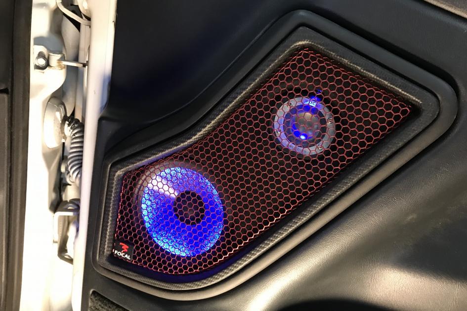 Custom Door Speakers