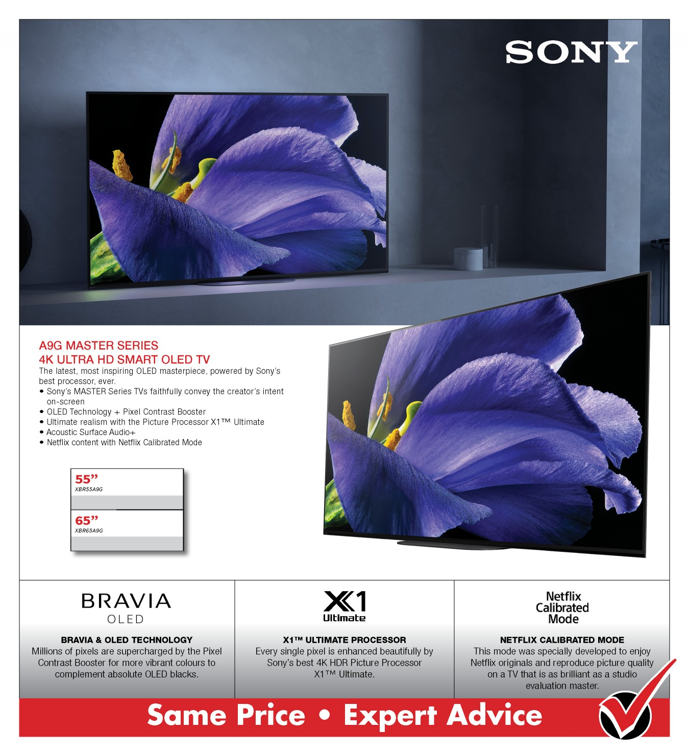 Sony A9G OLED 4K TV